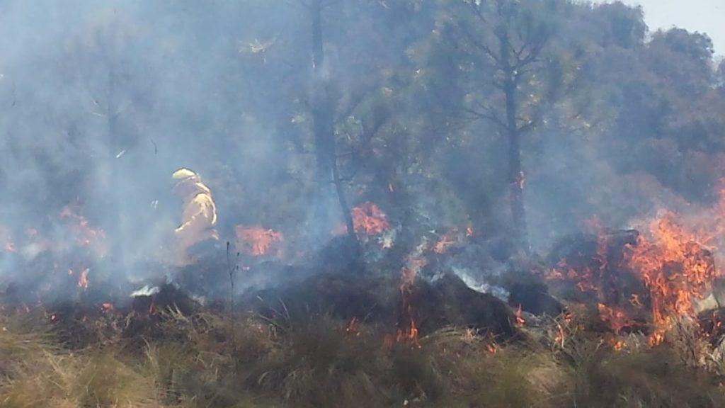El incendio forestal en el volcan Iztaccihuatl fue liquidado en su totalidad Conafor