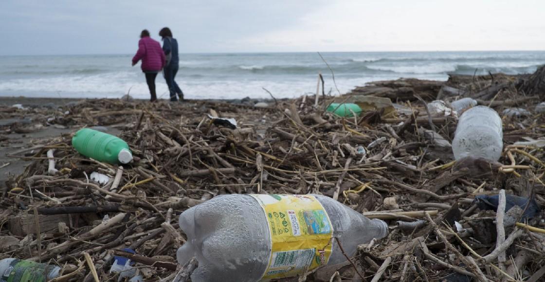 Resultados del programa Playas Limpias correspondiente al primer periodo 2021