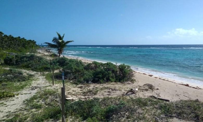 Desconoce Semarnat el PMOTEDUS Tulum como instrumento para planificacion territorial