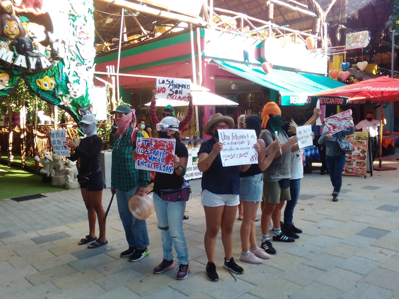 Se Manifiestan de manera pacifica contra el negocio Animalandia Maya conocido por explotar a cachorros de leon en Playa del Carmen press